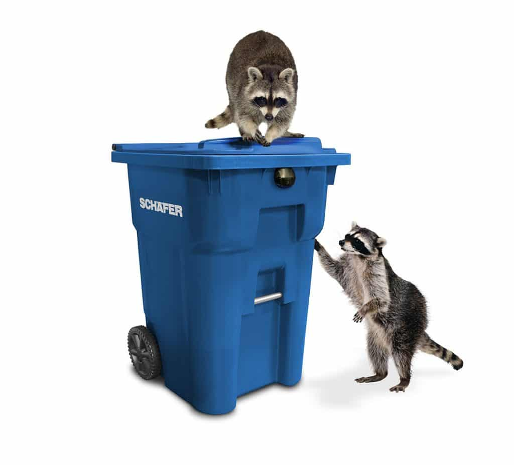 wildlife resistant cart with raccoons